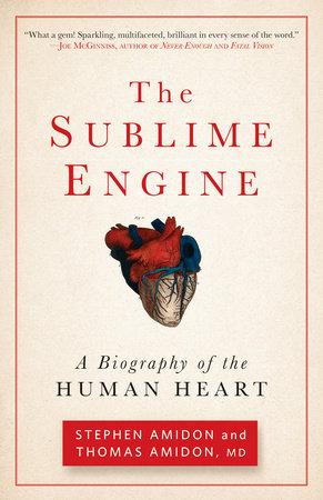 The Sublime Engine by Stephen Amidon and Thomas Amidon