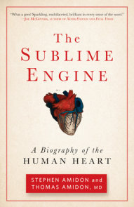 The Sublime Engine
