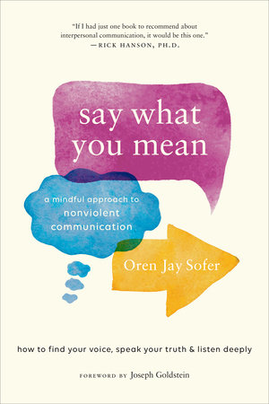 Say What You Mean by Oren Jay Sofer