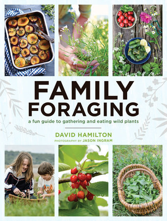 Family Foraging by David Hamilton