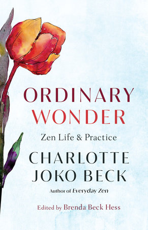 Ordinary Wonder by Charlotte Joko Beck