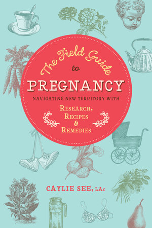 The Field Guide to Pregnancy by Caylie See, L.Ac.