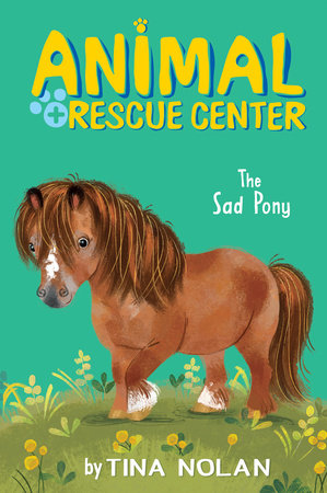 The Sad Pony by Tina Nolan