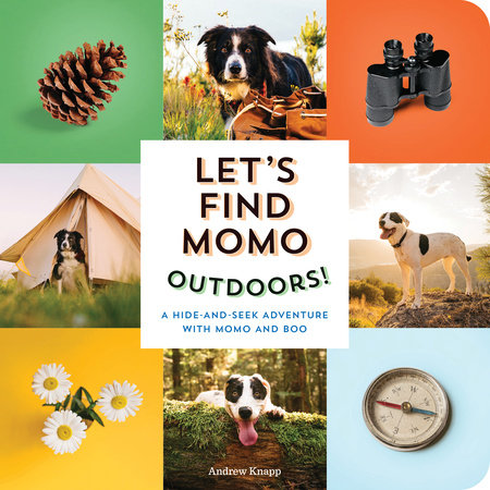 Let's Find Momo Outdoors! by Andrew Knapp
