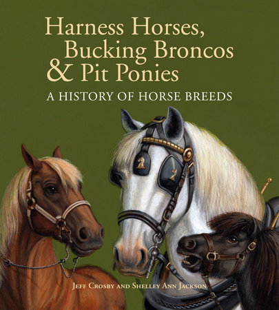 Harness Horses, Bucking Broncos & Pit Ponies by Jeff Crosby and Shelley Ann Jackson