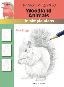 How to Draw Woodland Animals In Simple Steps