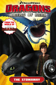 Dragons: Riders of Berk - Volume 4: The Stowaway (How to Train Your Dragon TV)
