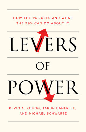 Levers of Power by Kevin A. Young, Tarun Banerjee and Michael Schwartz