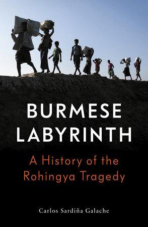 The Burmese Labyrinth by Carlos Sardina Galache
