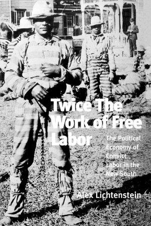 Twice the Work of Free Labor by Alex Lichtenstein
