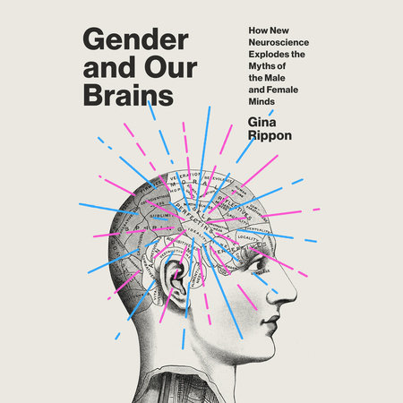 Gender and Our Brains by Gina Rippon