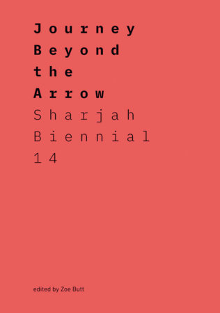 Journey Beyond the Arrow by Zoe Butt
