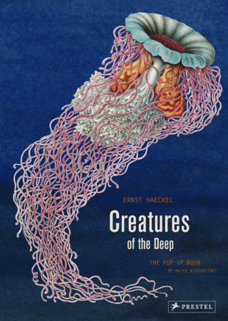 Creatures of the Deep by Ernst Haeckel and Maike Biederstaedt