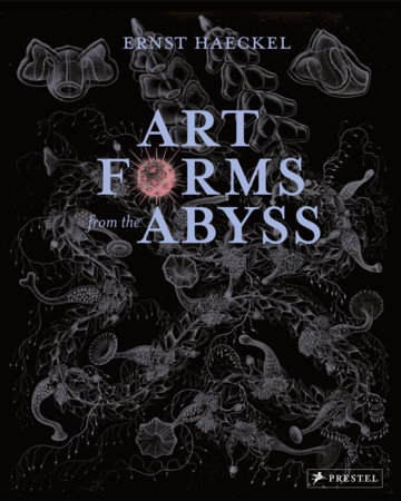 Art Forms from the Abyss by Peter J Le B Williams, Dylan W. Evans, David J Roberts and David Thomas