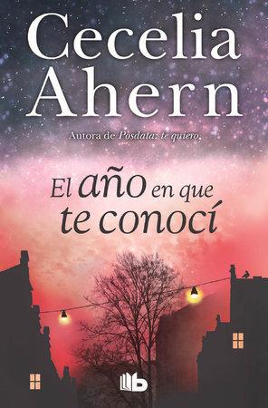El año en que te conocí  /  The Year I Met You by Cecelia Ahern